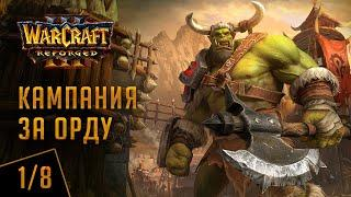 Прохождение кампании за орду, глава 1. Warcraft 3: Reforged